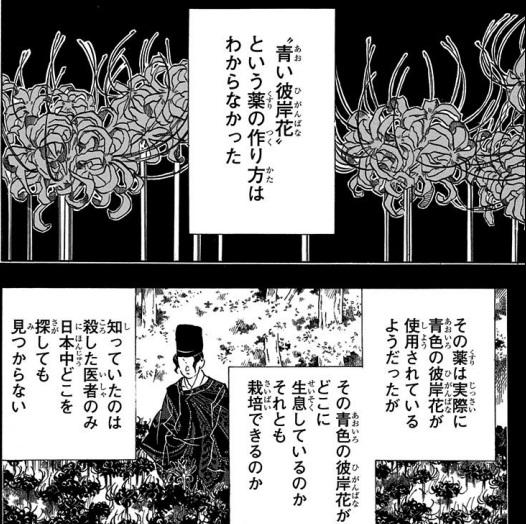 伊黒小芭内の過去:番外・青い彼岸花との関係の噂