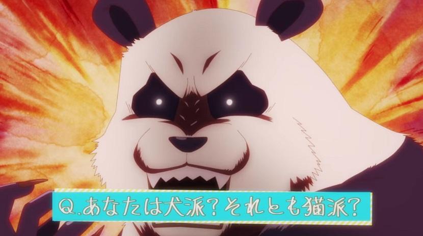【呪術廻戦】犬派?猫派?パンダ派?