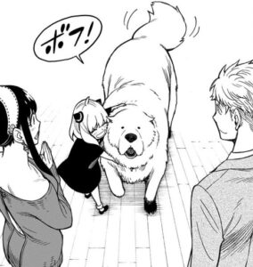 【スパイファミリー】ボンドの犬種や年齢、性別を紹介!